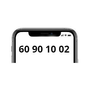 60 90 10 02 (Mobil)