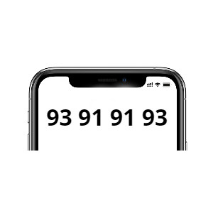 93 91 91 93 (Mobil)